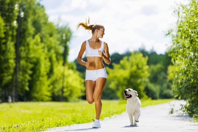jogging-z-psem1258