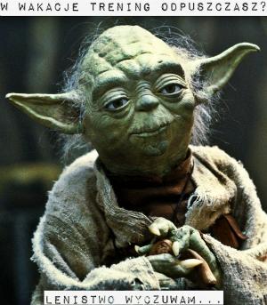 Yoda_na_bloga-maly